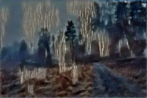 metsa_takaisin2_50