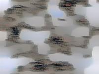 xpl4vgg16-helsinki03-fc8-cw1e3sw10000-800_350